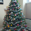 Church Christmas Tree 2020